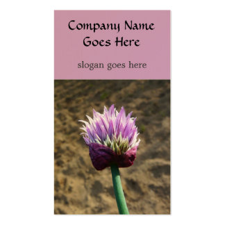 Chive Herb  Flower Bloom Business Card Templates