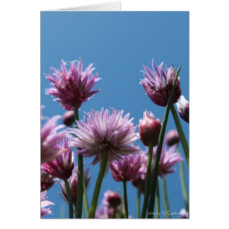 Chives Card