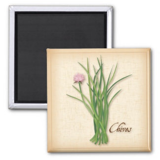 Chives Herb, Pink Flowers Magnet