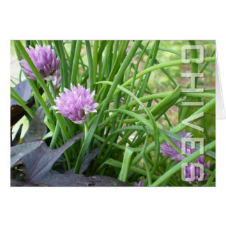 Chives, Notecard