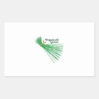 Chives_Organically Grown Rectangular Sticker