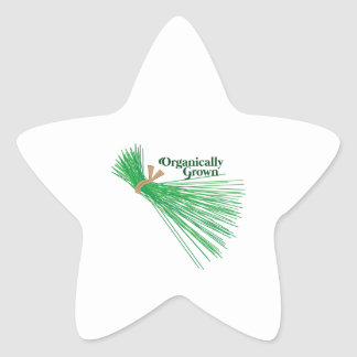 Chives_Organically Grown Star Sticker