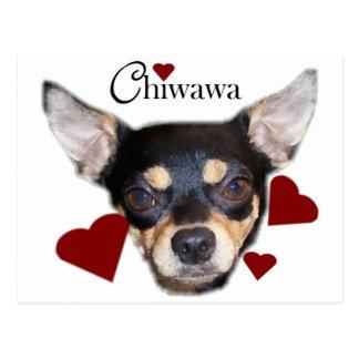chiwawa postcard
