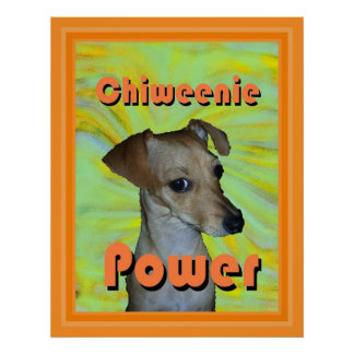 Chiweenie Power Poster
