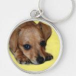 Chiweenie Puppy Keychain