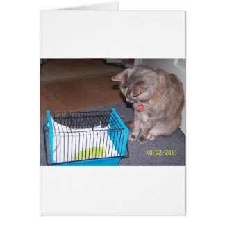 Chloe the Cat Helping you to relax Card