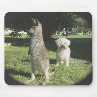 Chloe the Kangaroo & Oliver the Bichon Frise Gifts Mouse Pad