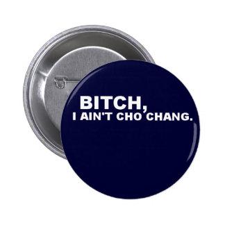Cho Chang Pin