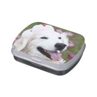 CHO CHO White Jelly Belly™ Candy Tin