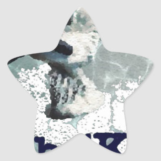 cho kit star sticker