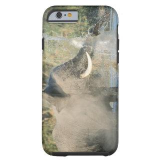 Chobe River, Botswana, Africa Tough iPhone 6 Case