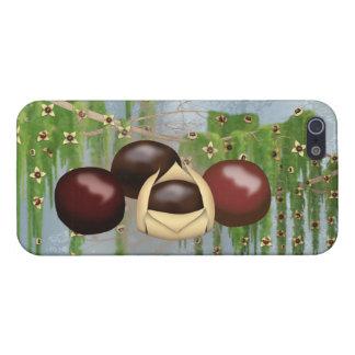 Choc. Fantasy iPhone 5/5S Case (Savvy)