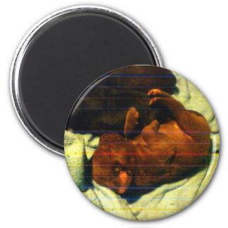 CHOC LAB PUP 3-10-09 2 INCH ROUND MAGNET
