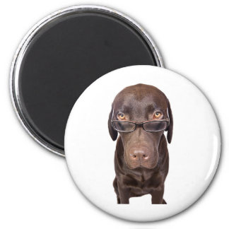 Choccy Lab in Glasses 2 Inch Round Magnet