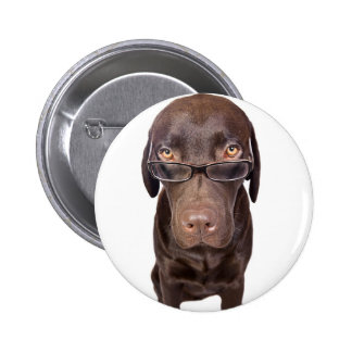 Choccy Lab in Glasses Button