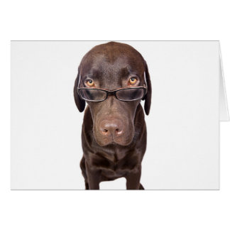 Choccy Lab in Glasses Card
