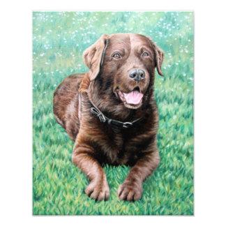 Choco perro labrador arte con fotos