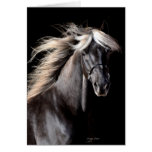 Choco Rocky Mountain Horse Card