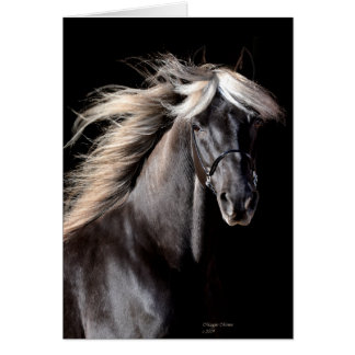 Choco Rocky Mountain Horse Greeting Card