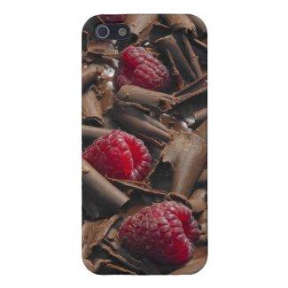 Chocolate And Raspberries iPhone 5 Case
