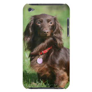 Chocolate and Tan Long-haired Miniature Dachshund iPod Touch Case-Mate Case
