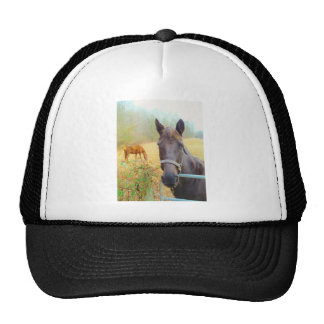 Chocolate Brown horse Trucker Hat