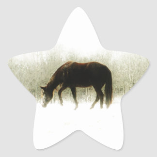 Chocolate Brown horse in the fog Star Sticker