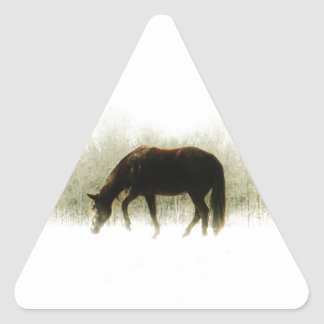Chocolate Brown horse in the fog Triangle Sticker