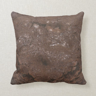 Chocolate Brownie Throw Pillow