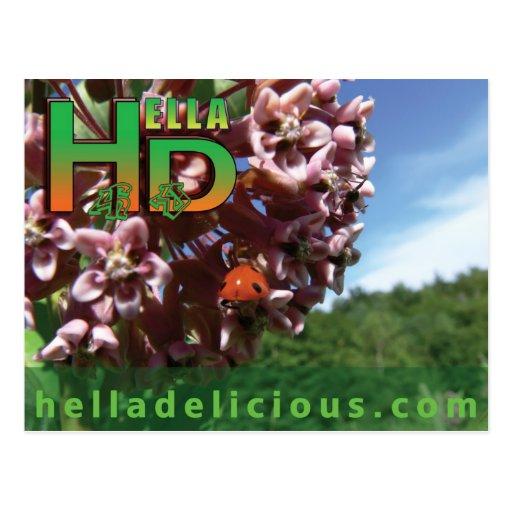 Chocolate Chip Recipe Postcard