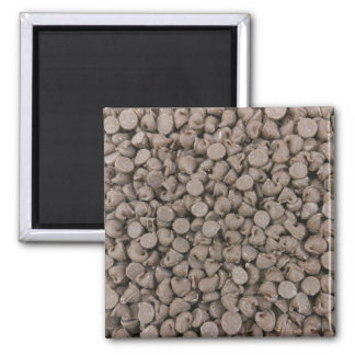 Chocolate Chips Magnet