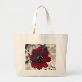 Chocolate Cosmos Flower Large Tote Bag