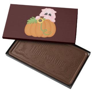Chocolate del cerdo de la calabaza de la acción de caja con tableta de chocolate con leche grande