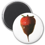 Chocolate dipped strawberry 2 inch round magnet