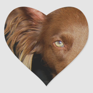 Chocolate dog heart sticker