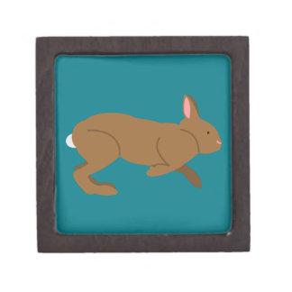 Chocolate Easter Bunny Rabbit Keepsake Box