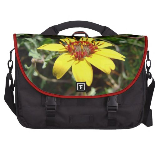 Chocolate flower Berlandiera lyrata yellow Commuter Bags