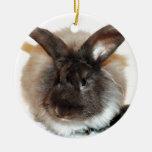 Chocolate French Angora Bunny Rabbit Photograph Ceramic Ornament