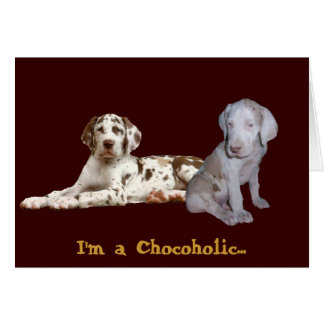 Chocolate Great Danes Card