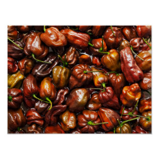 Chocolate Habanero Poster