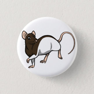 Chocolate Hooded Rat badge Pinback Button