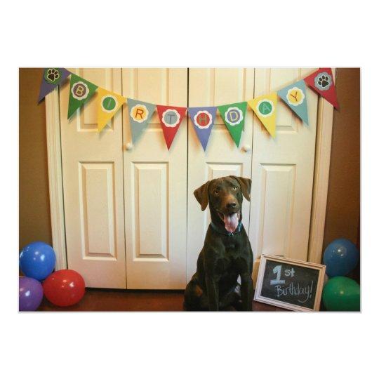 Chocolate Lab 1st Birthday Party Invitation