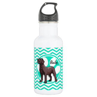 Chocolate Lab; Aqua Green Chevron Stainless Steel Water Bottle