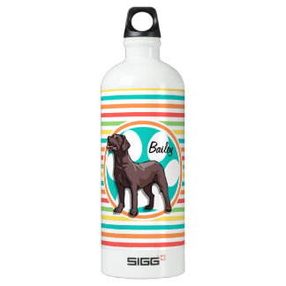Chocolate Lab; Bright Rainbow Stripes Water Bottle