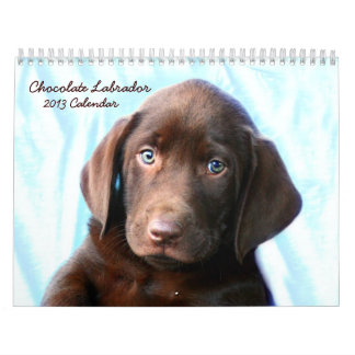 Chocolate Lab Calendar