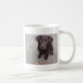Chocolate Lab Classic White Coffee Mug