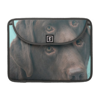 "Chocolate Lab Dog 13"" MacBook SLeeve Sleeve For MacBook Pro"