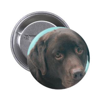 Chocolate Lab Dog Button