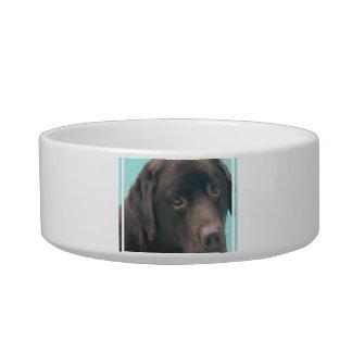 Chocolate Lab Dog Pet Bowl