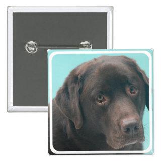 Chocolate Lab Dog Pin